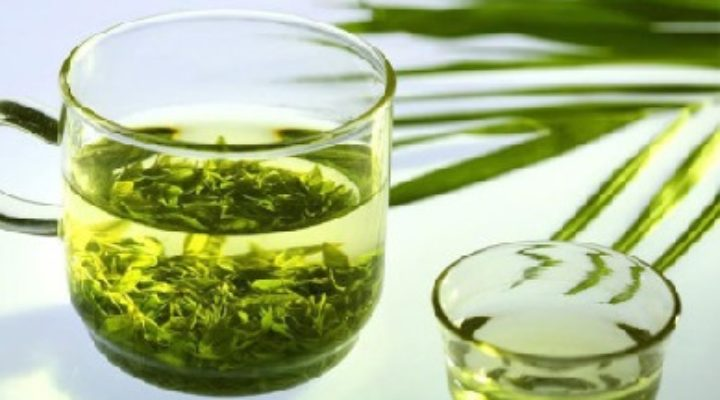 Зеленый чай польза и вред